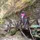sipi68profilképe, 53, Törökszentmiklós